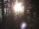 солнце, шариком на елке, зацепилось за иголки..