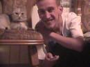 А я кошечек люблю!!!