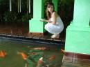 рыбки-то золотые..загадываю желание))