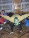 Шрэк - акробат
