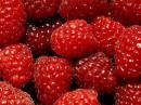 любимая ягода)