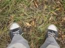 green grass!!!....