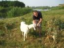 Спаиваю козу :)