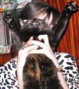 Любимый котик...