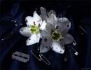 ну можно сказать цветок...