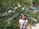 люблю такие кактусяки :)