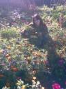 я на огороде в любимой бабушки)))п.г.т. Володарка