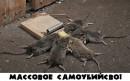 сильно кушать хотели)))))))))