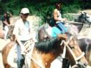 лошадка!!!!!!!и  Я