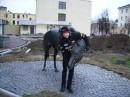 я и лошадь...ну почти живая....