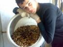 На подработки...Асорти орехово-виноградное:)