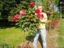 http://i.bigmir.net/photo/thumb/4/9/3209094.jpg http://i.bigmir.net/photo/thumb/4/9/3209094.jpg