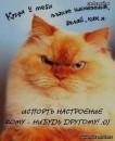 прислушайтесь к совету........этот кот МУДРЫЙ................