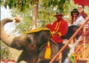 Всё там-же,катаемся с сестрой на слоне