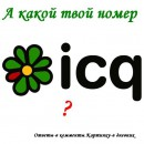 40-60-70-238 стучитесь)))
