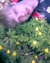 с цветочками)))