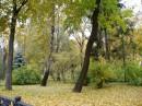 класный парк