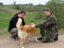 до чего же добродушный песик! 29.04.2008 - 04.05.2008 Беларусь