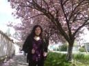 Ужгород! Цветущая сакура и я