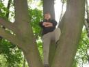 Я на дереве