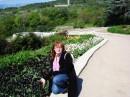 Черные тюльпаны в Никите