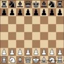 шахматы )