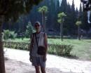 типа пальмы на заднем плане )))))