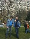 Могнолии цветут... Киев. Апрель 2005.