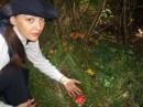 Грибы в лесах Польши :-)