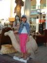 Египет/в городе