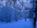 Как же я люблю зиму :)