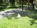 Под радугой :)