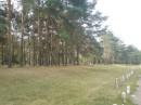 перелесок возле Лесной