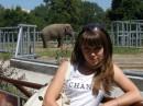 слоник:))