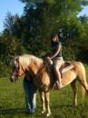 Люблю лошадей..