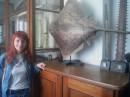 Зоологічний музей Львівського університету