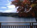просыпаешься ранним утром в коттедже и видишь сразу такую красоту! 11.10.2008