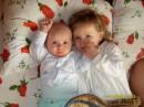 мои племянники