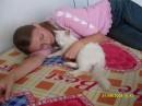 Люблю кошенят!!!!!!!!!