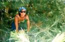 В Крымских джунглях :))