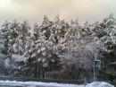 Українська зима. Красиво...