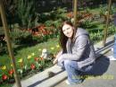 Первые весенние тюльпаны)))))))