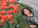 не получилось лицезреть тюльпаны на даче пришлось идти в ботсад:)