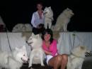 С этими собачками мне разрешили сфоткаться:)
