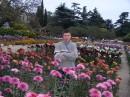 Сентябрь 2004г , Крым (Никитенский бот.сад) Выставка хризантем .