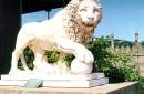 Каменная лестница со скульптурами: «Спящие львы», «Просыпающиеся львы», «Бодрствующие львы».