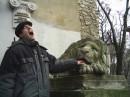 Даже каменный лев раз в год кусается.