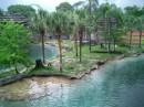 Natsuanalnui Park v Florede gorad Tampa