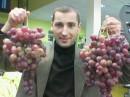 Ну как виноградец?