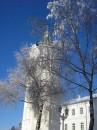 Колокольня Лавры и замерзшее дерево рядом